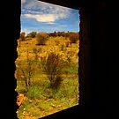 Window by James mcinnes
