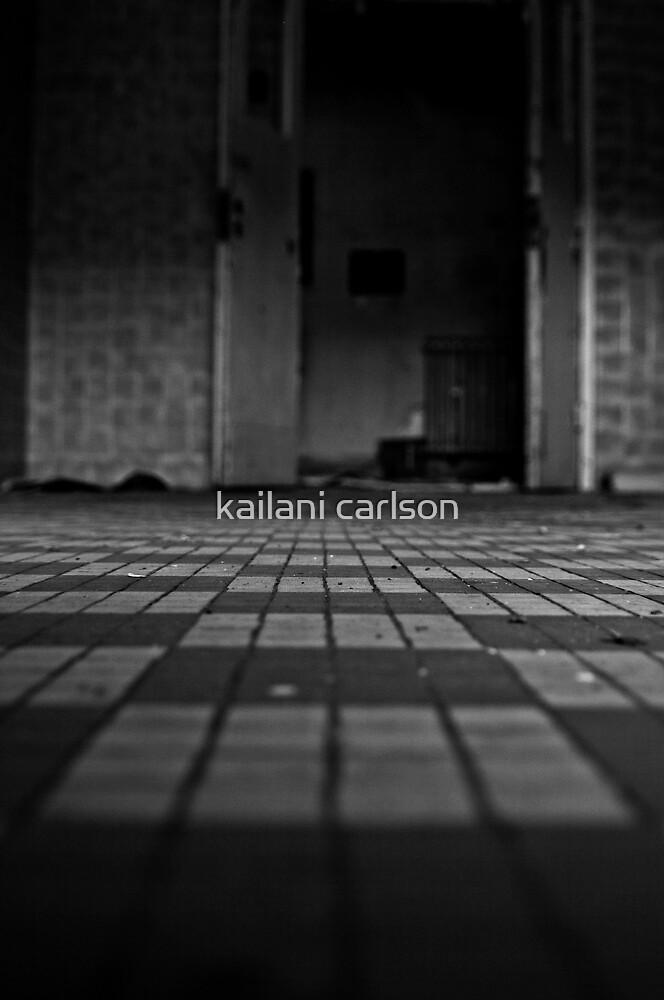 Abandoned Asylum by kailani carlson