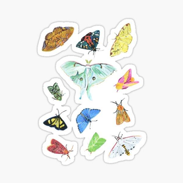 Vivid Moths Sticker