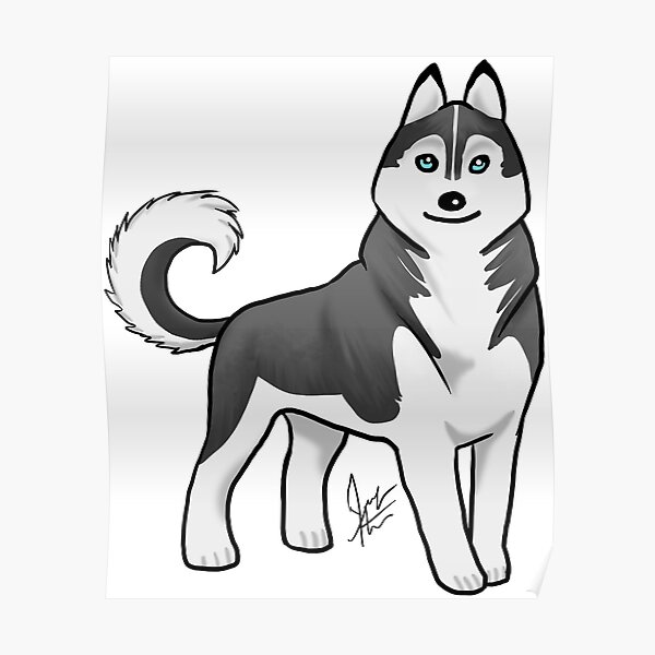 Husky - Black and White Poster