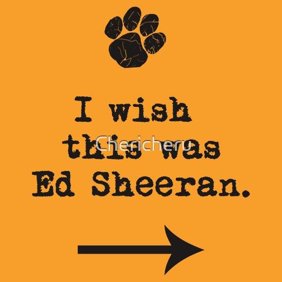 TShirtGifter presents: I wish this was Ed Sheeran