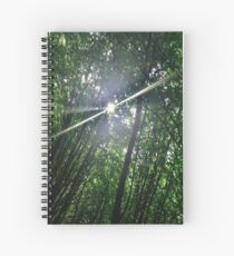 Forrest Fairy Spiral Notebook