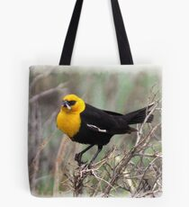 Yellow Headed Blackbird Tote Bag