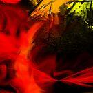 Fire by ToorDesign