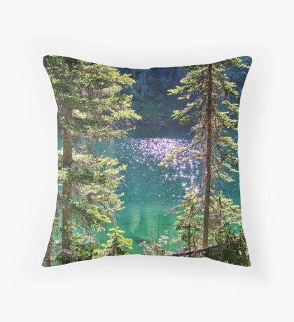 Hall Lake Throw Pillow