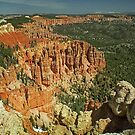 Bryce Canyon #1 by Peter Hammer