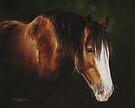 Gentle Glow by Heidi Schwandt Garner