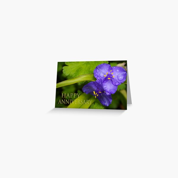 pretty blue pair anniversary card Greeting Card