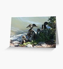 Family Photo Greeting Card