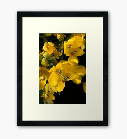 Warm in Yellow Framed Print