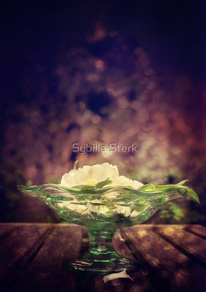 A Bowl Of Summer by Sybille Sterk