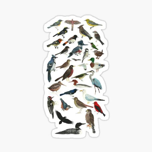 Bird Fanatic Sticker