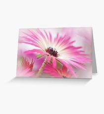 Summer breeze... Greeting Card