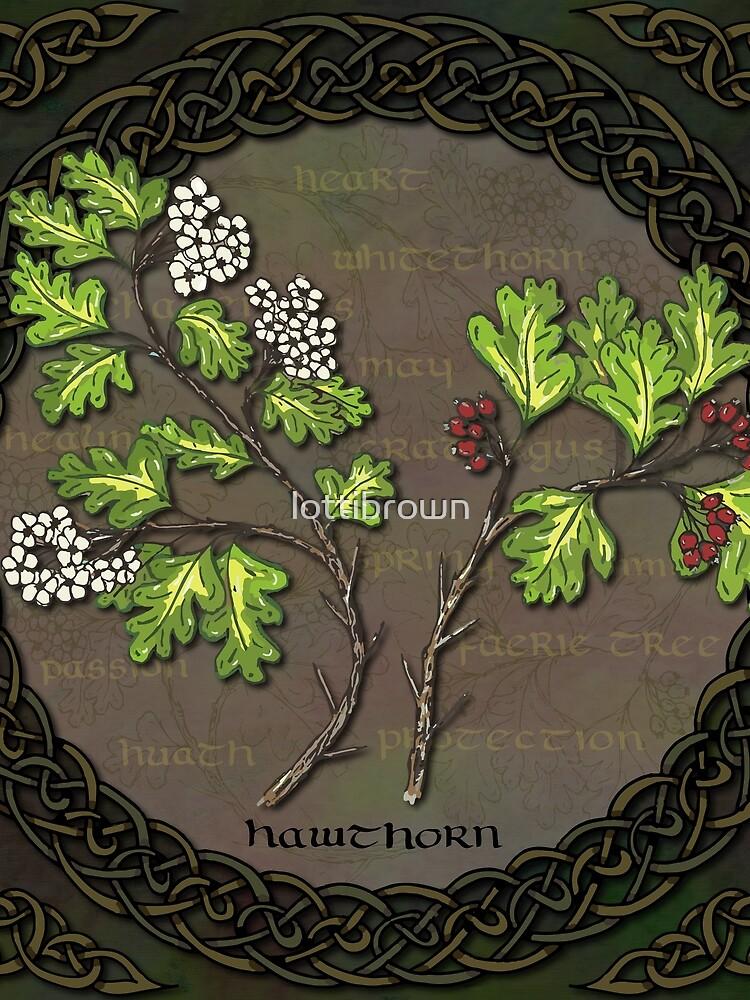 Celtic Hawthorn by lottibrown