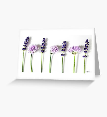 Lavender and Chives Greeting Card
