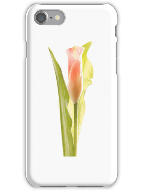 Single lily iPhone case by Martyn Franklin