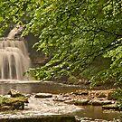 West Burton Falls by Sue Knowles