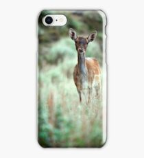 Fallow Deer dama dama case iPhone Case/Skin