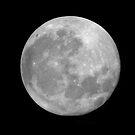 Full Moon. by chris kusik