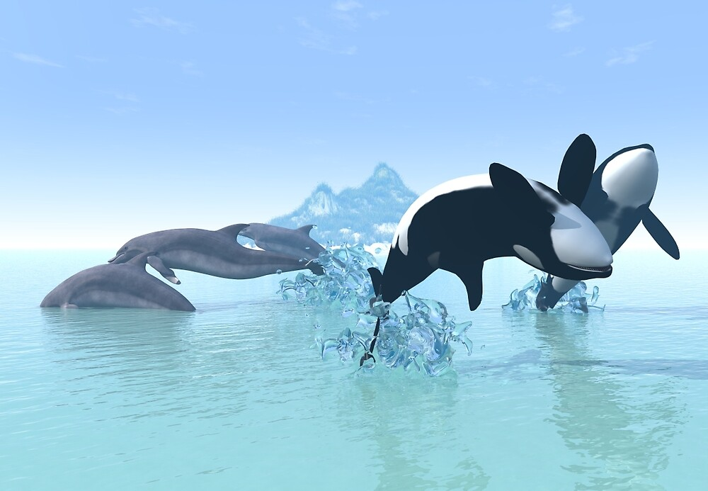 Dolphins and Orca's by DesignCadeautje