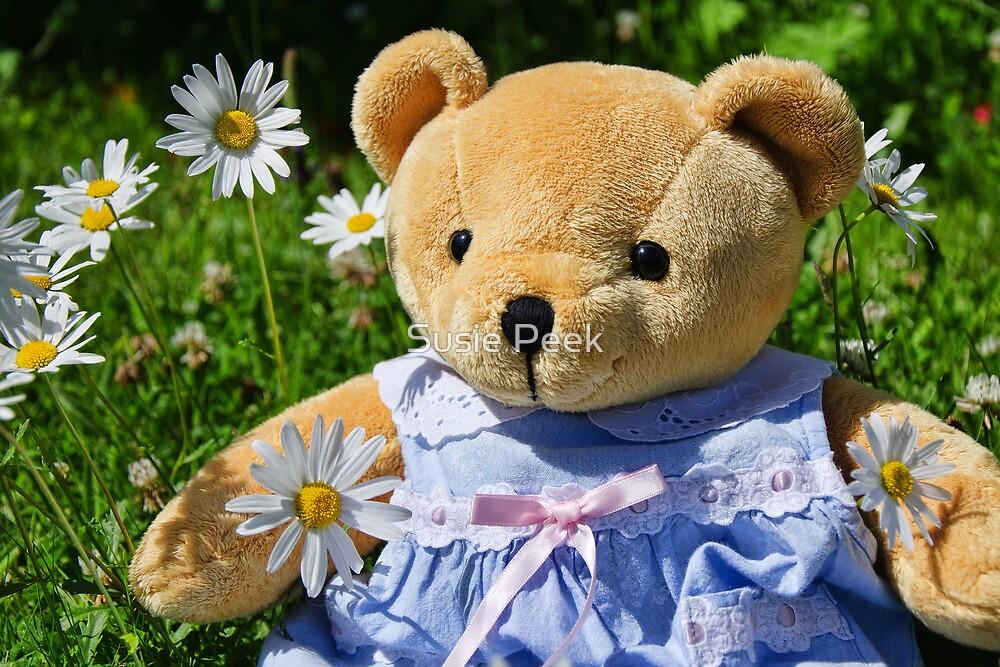 Sunshine And Daisies :) by Susie Peek