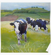 Holstein Friesian Cows Painting Poster
