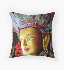 The Glory of Ladakh Throw Pillow