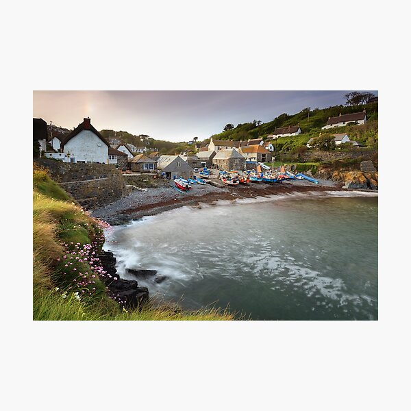 Spring  at Cadgwith Photographic Print