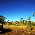 Landy in the bush and wilderness of Arnhem Land by georgieboy98