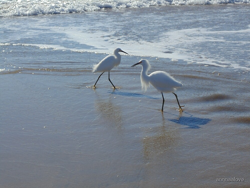 Beach Birds by annnaalove