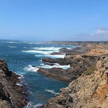 Rugged Coastline by Dee2west