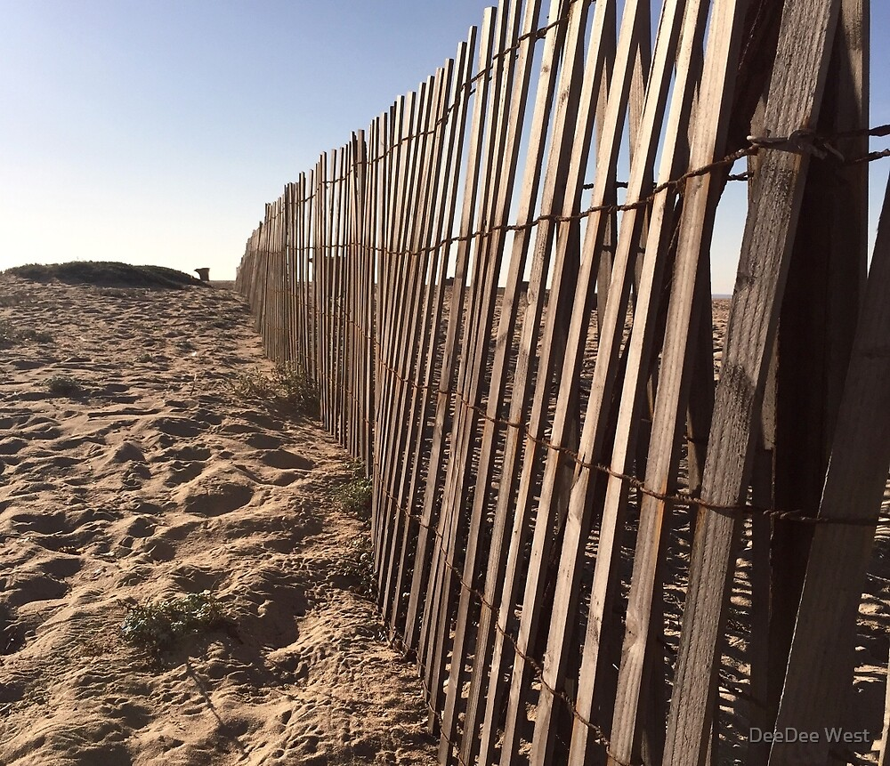 Beach Fences  by Dee2west