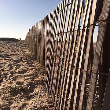 Beach Fences  by Dee2west