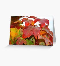 Feathertop Winery - Porepunkah Victoria Greeting Card