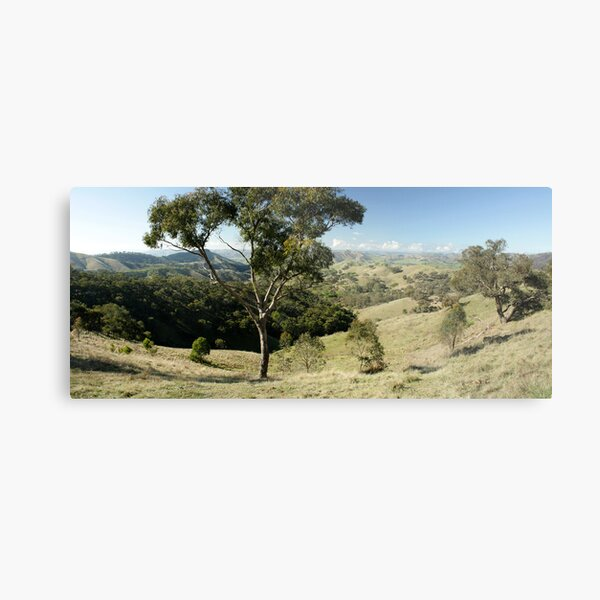 Valley of a Thousand Hills - Strath Creek Victoria Metal Print