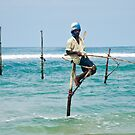 Stilt Fisherman by Dilshara Hill