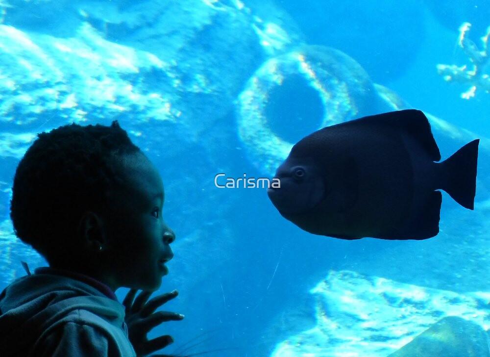 Close encounter by Carisma