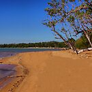 The magic of Arnhem Land - tropical Kennedy Bay by georgieboy98