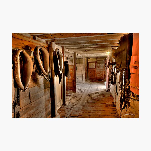 The Victorian Stables (HDR) Photographic Print