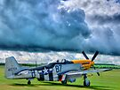 Storm Clouds Over Frankie - HDR by Colin  Williams Photography