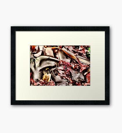 Salad of the Sea Framed Print