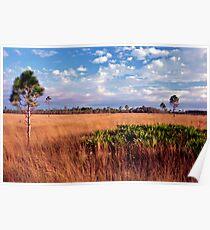 Prairie View. Three Lakes W.M.A. Poster