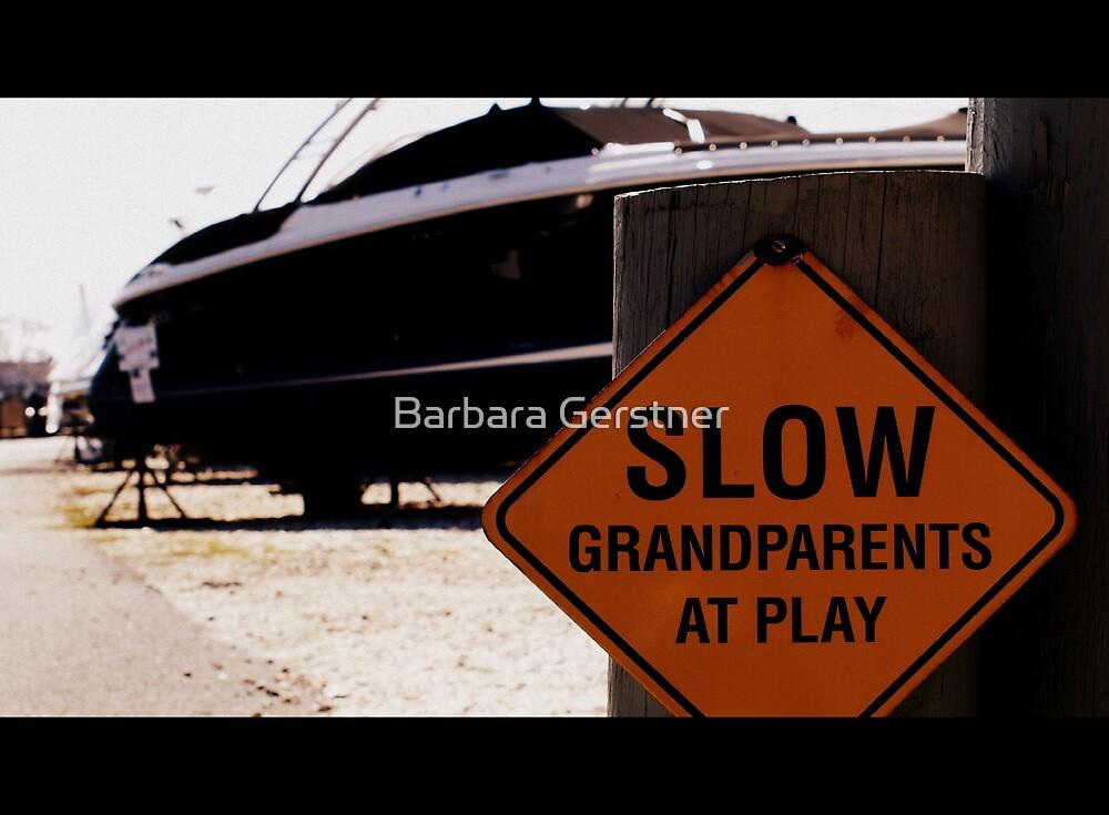 The Joys of Retirement by Barbara Gerstner