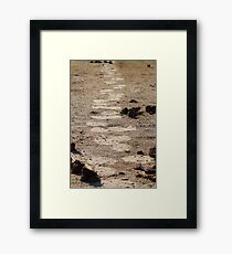 In giants footsteps Framed Print