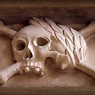 Skull & Crossbones by Clive