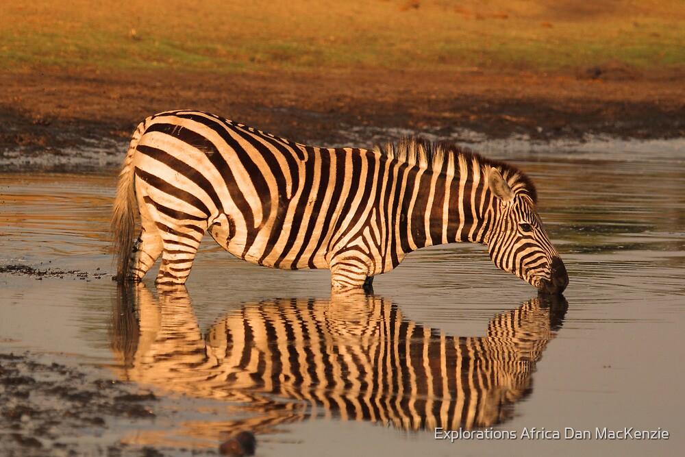 Sweet waters by Explorations Africa Dan MacKenzie