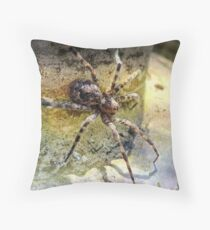 Spider Man Throw Pillow