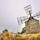 Windmills of Montedor by João Figueiredo