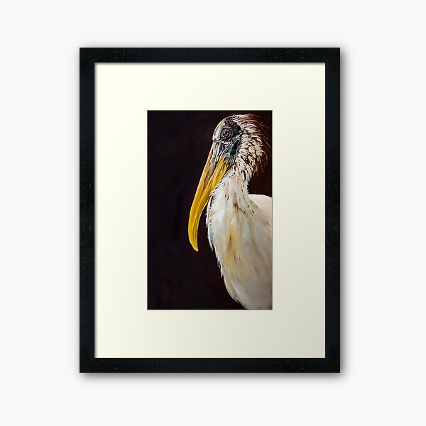 Larry the Wood Stork  Framed Art Print