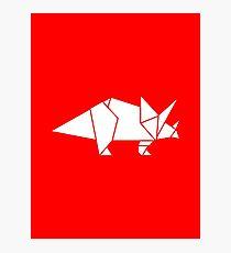 Prehistoric Origami - Triceratops  Photographic Print